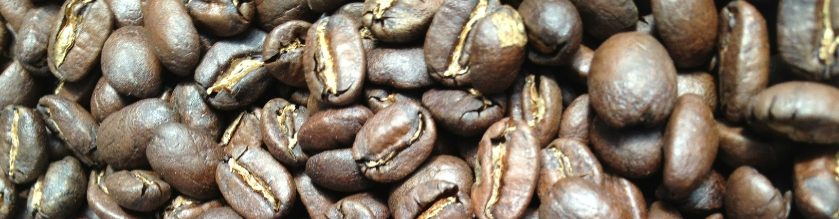 NanoRoast Coffee Roasters